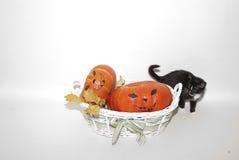 Szczęśliwy Halloween! Czarny kot! Zdjęcie Stock