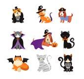 Szczęśliwy Halloween - koty i psy w potworów kostiumach, Halloween przyjęcie Wektorowa ilustracja, sztandar, elementy ustawiający royalty ilustracja