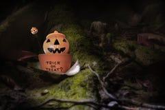 Szczęśliwy Halloween pojęcie Zdjęcie Stock