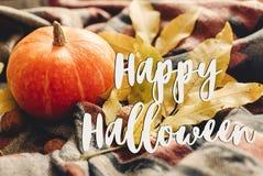 Szczęśliwy Halloween teksta znak na jesieni bani z kolorowymi liśćmi Fotografia Stock