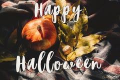 Szczęśliwy Halloween teksta znak na jesieni bani z kolorowymi liśćmi Obraz Royalty Free