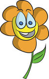 Szczęśliwy kwiat Obrazy Stock
