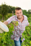 Szczęśliwy męski rolnik przy winnicą Zdjęcia Stock