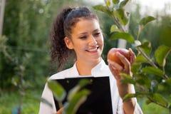 Szczęśliwy młoda kobieta agronom z czerwonym jabłkiem w jej ręce Fotografia Royalty Free
