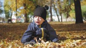 Szczęśliwy małe dziecko, chłopiec śmia się outdoors i bawić się w jesieni w parkowym spacerze zbiory wideo
