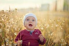 Szczęśliwy mały chłopiec obsiadanie i ono uśmiecha się na łące na naturze w lato słonecznym dniu zdjęcie royalty free