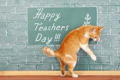 Szczęśliwy nauczyciela dzień obrazy stock