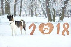 Szczęśliwy nowego roku 2018 kartka z pozdrowieniami Zdjęcie Royalty Free