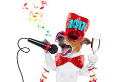 Szczęśliwy nowego roku psa celberation Obrazy Stock