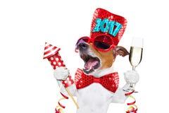 Szczęśliwy nowego roku psa celberation Zdjęcie Royalty Free