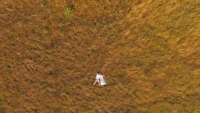Szczęśliwy nowożeńcy kłamstwo na żółtej łące Aerofutazh na widok piękna potomstwo para na tło łąkach zbiory wideo
