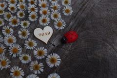 Szczęśliwy nowy rok 2019! obrazy royalty free