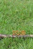 Szczęśliwy nowy rok 2016, natury pojęcie i drewno numerowy pomysł, Zdjęcia Royalty Free