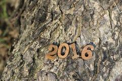 Szczęśliwy nowy rok 2016, natury pojęcie i drewno numerowy pomysł, Fotografia Stock