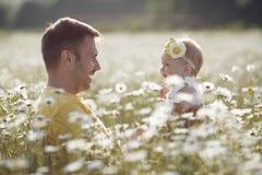 Szczęśliwy ojciec z małą córką bawić się w lecie w polu białe stokrotki Obraz Royalty Free