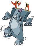 Szczęśliwy Pachyderm Fotografia Stock