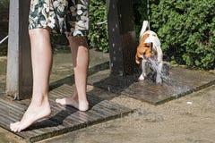 Szczęśliwy przy południem bawić się z strumieniem woda od prysznic blisko basenu, dźwigarka Russell fotografia royalty free