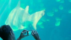 Szczęśliwy rodzinny patrzeje rybi zbiornik zbiory wideo