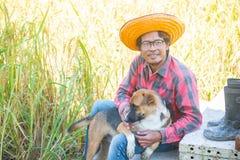 Szczęśliwy rolnik z psim obsiadaniem w ryżowym polu dla zbierać zdjęcie royalty free