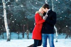 Szczęśliwy romantyczny potomstwo pary odprowadzenie w zima parku na latających płatek śniegu śnieżnych zdjęcia royalty free