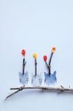 Szczęśliwy sowa dzień Zdjęcie Royalty Free