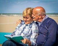szczęśliwy stare pary Fotografia Royalty Free