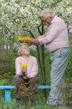 szczęśliwy stare pary Zdjęcia Royalty Free