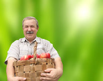 Szczęśliwy starszy mężczyzna z jabłkami w wiadrze obrazy royalty free