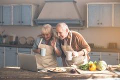 Szczęśliwy starszy pary małżeńskiej mówienie w internecie na laptopie obrazy royalty free