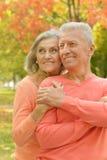 Szczęśliwy starszy pary przytulenie Obraz Royalty Free
