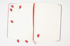 Szczęśliwy szablonu notatnik joyfully Fotografia Stock