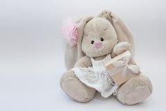 szczęśliwy urodziny królik prezent Obrazy Stock