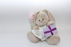 szczęśliwy urodziny królik prezent Zdjęcie Stock