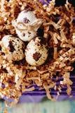 Szczęśliwy Wielkanocny rocznik i naturalna stylowa pocztówka Fotografia Royalty Free