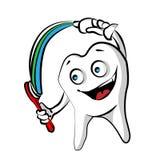 szczęśliwy ząb Fotografia Royalty Free