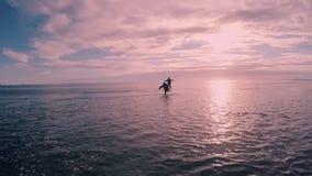 Szczęśliwy z podnieceniem turysty bieg na plaży przy zmierzchem zbiory wideo