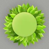 Szczęśliwy Ziemskiego dnia szablon Ekologia temat Jaskrawa świeża zielona liść rama odizolowywająca na przejrzystym tle 10 eps royalty ilustracja