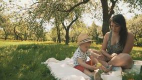 Szczęśliwych potomstw macierzysty bawić się na koc z jej uroczym synem pod drzewem przy parkiem zbiory