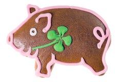 Szczęsliwa świnia Zdjęcie Stock