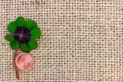 Szczęsliwa koniczyna i cent kłamamy na tkaninie dla Obraz Royalty Free