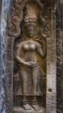 Szczegółów cyzelowania Devata w Ta Prohm świątyni Obrazy Stock