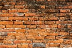 Szczegół ściana z cegieł Fotografia Royalty Free