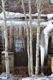 Szczegół Allie ` s kabina, beaver creek, Vail Ucieka się, Avon, Kolorado Fotografia Royalty Free