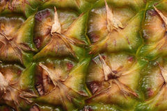 Szczegół ananasowa łupa Zdjęcia Royalty Free