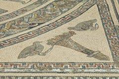 Szczegół antyczna Romańska mozaika przy Volubilis Fotografia Stock
