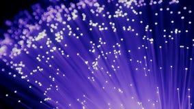 Szczegół błękitna, purpurowa fiołkowa narastająca wiązka światłowodu tło, postu lekki sygnał dla wysokiego prędkości połączenie z ilustracja wektor