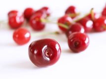 Szczegół dojrzałe świeże, organicznie soczyste wiśnie z liśćmi odizolowywającymi na białym tle, Wysoce odżywcza owoc, często fotografia stock