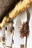 Szczegół garncarstwo dom w Tihany przy Jeziornym Balaton zdjęcia royalty free