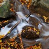 Szczegół jesieni siklawa Zdjęcia Stock