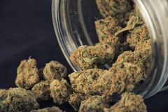 Szczegół marihuana pączki & x28; gronowy bóg strain& x29; na szklanym słoju isolat Zdjęcia Royalty Free